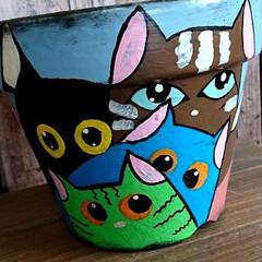 猫鉢🐱/ハンドメイド/鉢リサイクル/ペイント🖌️/素焼き鉢リメイク🖌️ おはようございます🐱 週末は素焼き鉢リメ…