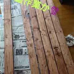 キャットウォーク/DIY/DIY収納 今日はスイッチON‼️ 外は小雨☔で、部…