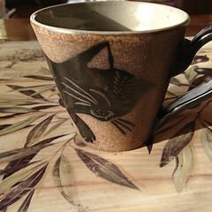 珈琲/猫ちゃんカップ/朝の一杯‼️ 朝のコーヒー❕ お気に入り🐈猫のカップで…