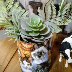 アンティーク エイジング 塗料 P-Effector ザラザラベース(ペンキ、塗料)を使ったクチコミ「リメ缶多肉植物サイズです。底穴が空いてる…」(1枚目)