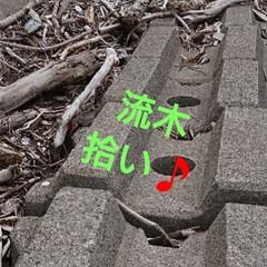 シーグラス/流木/雨季ウキフォト投稿キャンペーン/雑貨/ハンドメイド/DIY おはようございます🤗 昨日はお天気悪かっ…