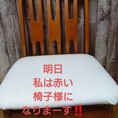 椅子様/捨てる前にリノベーション/DIY/わたしの作業部屋 こんばんは🐱 友カフェ☕椅子様修理リノベ…(9枚目)