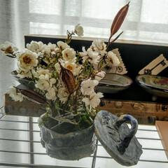 ドライフラワー/ハンドメイド 花かんざしのドライフラワーが できました…