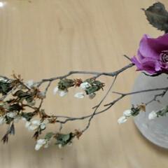 令和の一枚 薔薇のドライフラワー 飾ってみました😃 …