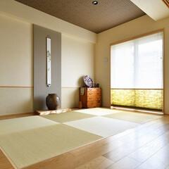 アクセントカラー/ブラウン/天井/琉球畳/採光/和室/...