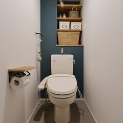 トイレ/収納/造作/棚/アクセントカラー/グルーグレー/...