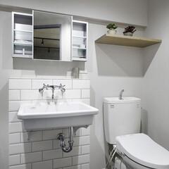 トイレ/洗面/サブウェイタイル/オープン/実験用洗面/リノベーション