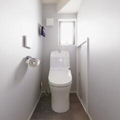 トイレ/リノベーション/階段下/アクセントカラー/グレイ