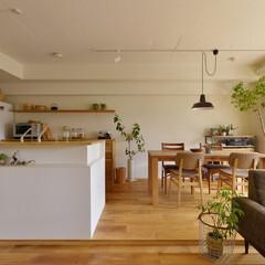 造作キッチン/カウンター キッチンカウンターのデザインは、だんな様…