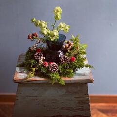キャンドル/スワッグ/クリスマスリース/IKEA/クリスマス2019/リミアの冬暮らし/... いよいよイヴまで5日🎄 みなさん盛り上が…(4枚目)