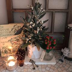 玄関インテリア/クリスマス雑貨/フォロー大歓迎/クリスマス/クリスマスツリー/住まい フォト初投稿です! 我が家の玄関クリスマ…