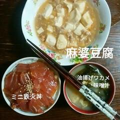 麻婆豆腐/ミニ鉄火丼/おうちごはん/フード 晩御飯🍴 ミニ鉄火丼 麻婆豆腐 油揚げワ…