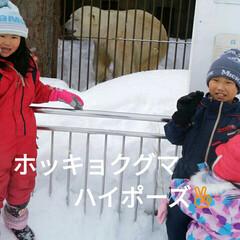 ホッキョクグマ/動物園/円山動物園/おでかけ 北海道円山動物園 ホッキョクグマと撮った…