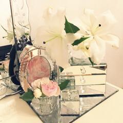 ミラー/ピエール ベランダで咲いた薔薇を飾りました。 小さ…