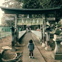 鳥居/神社/初詣/あけおめ/年末年始 家の近くに古い神社がありました。 5年以…