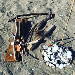 流木/貝殻/砂浜/フォロー大歓迎/風景/おでかけ/... 三浦海岸で素材集めしました。 冬の砂浜に…