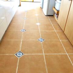 私の家/ここが好き/私の家のここが好き/キッチン/床/タイル床/... テラコッタタイルの床のキッチンが憧れでし…