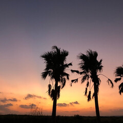 夕焼け/夕日/宮古島/海/フラダンス/フォロー大歓迎/... ハワイの様な宮古島のビーチの夕焼け。 こ…