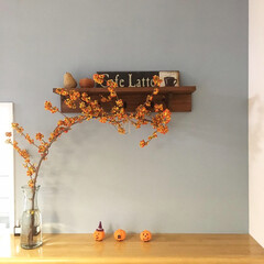秋色/秋インテリア/季節感/ツルウメモドキ/枝もの/花/... 物をたくさん増やさなくても、花や枝物で季…