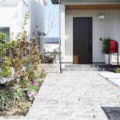 ESTINA/エスティナ/ガーデン/外構/エクステリア/庭/... 古いものと新しいものが融合した緑あふれる…