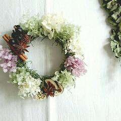 木の実のリース/紫陽花リース/プリザーブドフラワーリース/ナチュラルリース/グリーン/インテリア/... フリースタイルレッスン♪  好きな花材を…