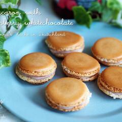 マカロン/チョコレート/ラズベリー/お菓子/おやつ/スイーツ/... ラズベリーのマカロンを作りました。 ラズ…