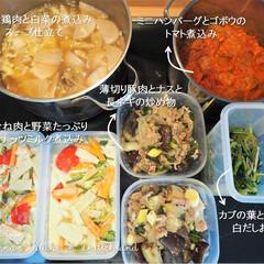 作り置き/常備菜/鶏肉/ハンバーグ/かぶ/料理研究家/... 一週間分の作り置きです♪ ★かぶと鶏肉と…(1枚目)