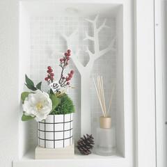 玄関ニッチ/お正月飾り/リメイク/ニッチ/DIY/100均/... グリーンボールにしめ縄のパーツの余り物を…