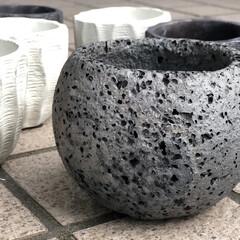 花のある暮らし/陶器鉢/インテリア/多肉植物 今日は信楽町のカフェに行ってきました! …