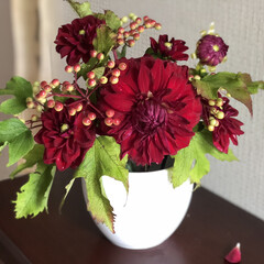 赤い花/ヒマワリ/ダリア/花のある暮らし/夏インテリア/お庭あそび 先週に生けた花、買ったグリーンのバラと、…