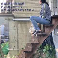 DIY/ゴールデンウイーク/ブログ/階段DIY/庭/ガーデニング/... ゴールデンウイーク 南崖に降りる階段完成…(1枚目)