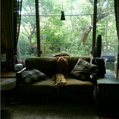 LDK/リビング/インテリア/家具/収納 LDK をいかに広く暮らすか、を考えアイ…