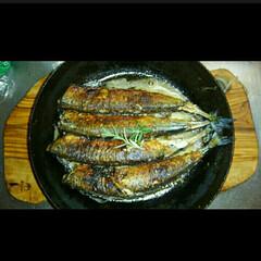 カフェ風/秋刀魚/秋の味覚 秋の味覚秋刀魚のハーブ焼きです。今年のは…