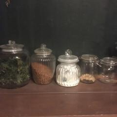 ガラス瓶/ペット/見せる収納/収納/キッチン収納/キッチン雑貨/... 見せる収納 ネコの餌 グラノーラ ヨーグ…