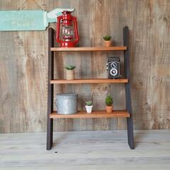 DIY/ハンドメイド/インテリア/住まい/ラダー/ラダーシェルフ/... 本体-ブラックブラウン、棚板-チークの …