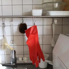 オカモト マリーゴールド フィットネス(キッチンゴム手袋)を使ったクチコミ「2018/12/14 Fri 水仕事の多…」