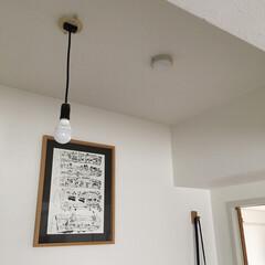 賃貸インテリア/インテリア/電球/暮らし 気に入ってずっと使っている裸電球。おしゃ…