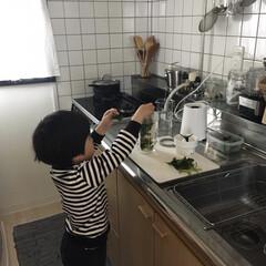 ミキサー/キッチン家電/いいねTop10決定戦/キッチン グリーンスムージー作りに毎日役立っている…