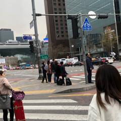 ピビンバ定食とトッカルビ定食/ワッフル/チーズタッカルビ/優しい姪っ子/韓国旅行 3泊4日の韓国旅行*⋆✈から帰って来まし…(6枚目)