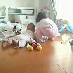 子育て/姉妹/日常/収納/おもちゃ/子供 子供の遊び場として使ってるダイニング。毎…(1枚目)