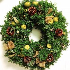 グリーンインテリア/オーダーメイド/ビッグサイズ/ナチュラル雑貨/クリスマスインテリア/冬インテリア/...