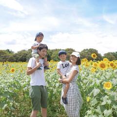 親子リンクコーデ/リンクコーデ/向日葵/ひまわり畑/ひまわり/親子/... ひまわり畑で家族写真♡ それぞれ白で合わ…