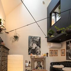 建築/住まい/狭小住宅 狭小住宅ですが素敵にお住まいです。