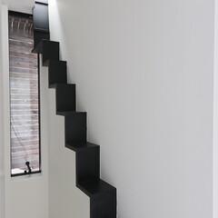 建築/住まい/建築デザイン/猫と住む家/猫と暮らす家/ハコノオウチ 猫のための専用階段 ハコノオウチ15  …