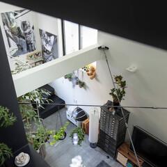 建築/住まい/狭小住宅/シンプル住宅 入居後の様子です