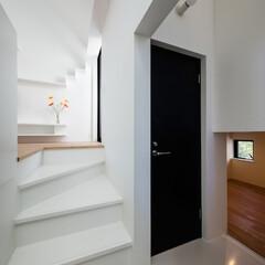 建築/住まい/建築家と建てる家/階段/シンプル住宅/OUCHI-40 デザインされた階段・石川淳建築設計事務所…(1枚目)