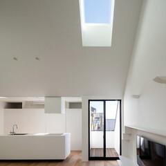 建築/住まい/天窓/2階リビング/シンプル住宅/建築家/... 天窓は透明ガラス  東向きの天窓です。 …