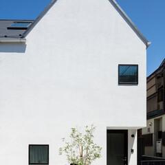 建築/住まい/建築デザイン/注文住宅/シンプル住宅 竣工時に記念樹を OUCHI-36