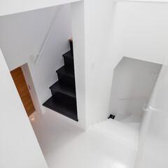 建築/住まい/建築家と建てる家/階段/シンプル住宅/OUCHI-40 デザイン階段・石川淳建築設計事務所