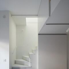 建築/住まい/猫と住む家/デザイン住宅/建築家住宅/OUCHI-40/... 建築家ならではの大きなドア・石川淳建築設…